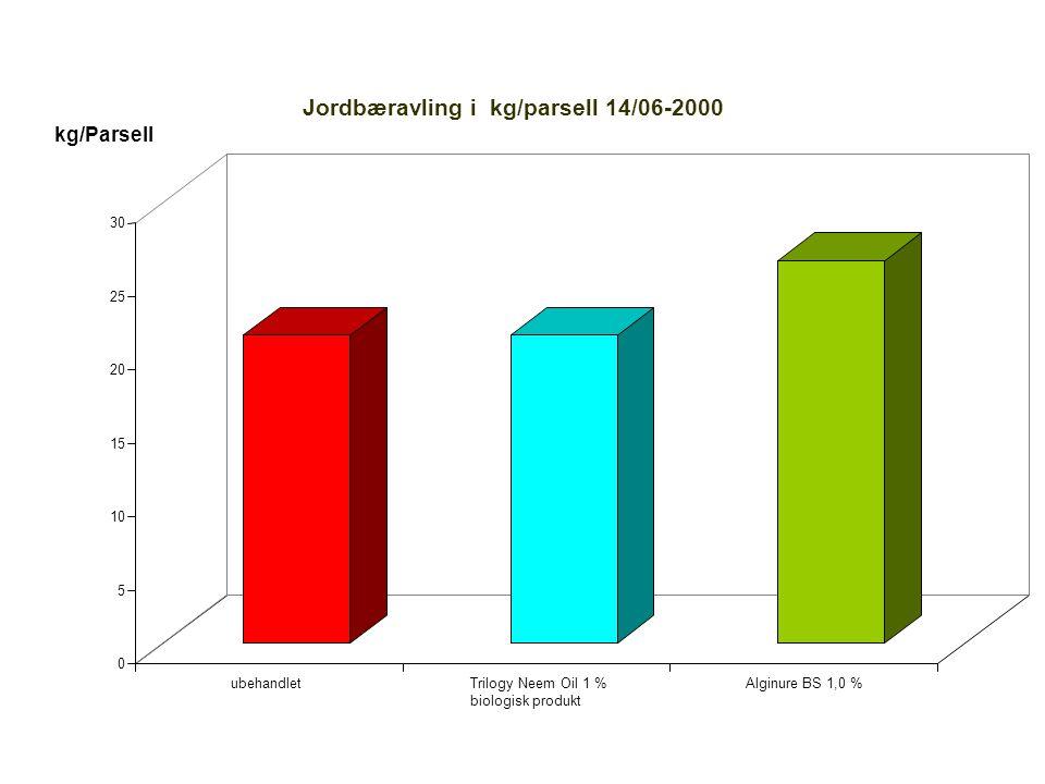0 5 10 15 20 25 30 kg/Parsell ubehandletTrilogy Neem Oil 1 % biologisk produkt Alginure BS 1,0 % Jordbæravling i kg/parsell 14/06-2000