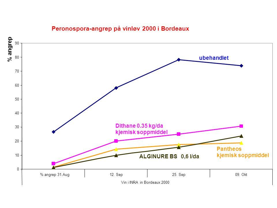 Peronospora-angrep på vinløv 2000 i Bordeaux 0 10 20 30 40 50 60 70 80 90 % angrep 31.Aug12.