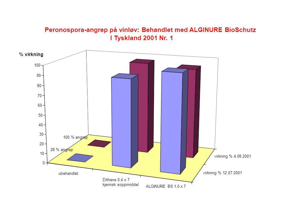 ubehandlet Dithane 0,4 x 7 kjemisk soppmiddel ALGINURE BS 1,0 x 7 virkning % 12.07.2001 virkning % 4.08.2001 0 10 20 30 40 50 60 70 80 90 100 Peronospora-angrep på vinløv: Behandlet med ALGINURE BioSchutz I Tyskland 2001 Nr.