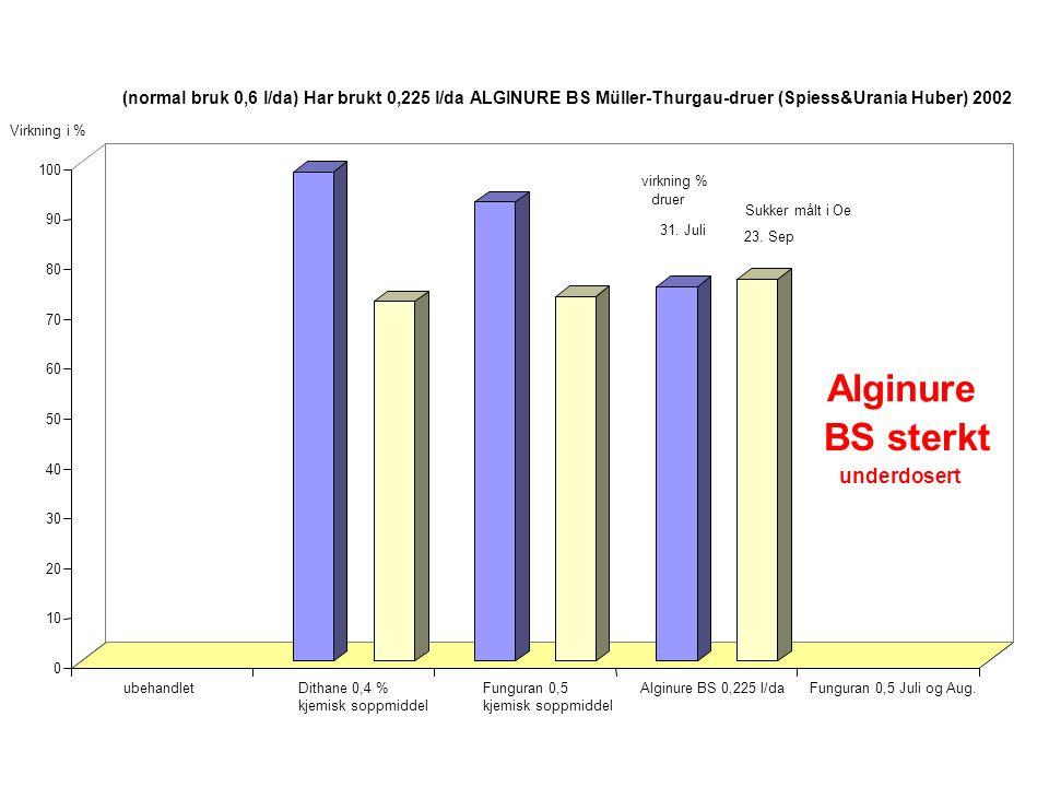 0 10 20 30 40 50 60 70 80 90 100 ubehandletDithane 0,4 % kjemisk soppmiddel Funguran 0,5 kjemisk soppmiddel Alginure BS 0,225 l/daFunguran 0,5 Juli og Aug.