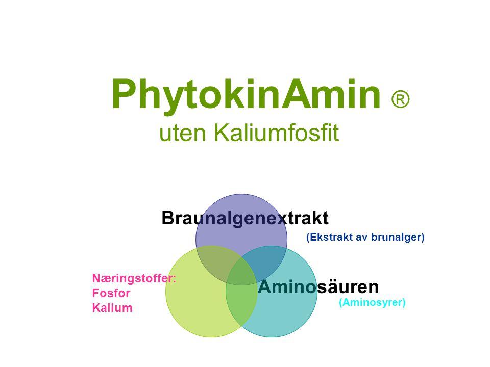 PhytokinAmin ® uten Kaliumfosfit Braunalgenextrakt Aminosäuren Næringstoffer: Fosfor Kalium (Ekstrakt av brunalger) (Aminosyrer)