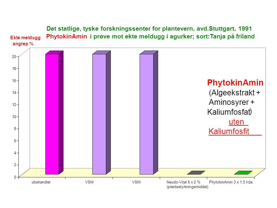 0 2 4 6 8 10 12 14 16 18 20 ubehandletVSM Neudo-Vital 6 x 2 % (plantestyrkningsmiddel) PhytokinAmin 3 x 1,5 l/da Det statlige, tyske forskningssenter for plantevern, avd.Stuttgart, 1991 PhytokinAmini prøve mot ekte meldugg i agurker; sort:Tanja på friland PhytokinAmin (Algeekstrakt + Aminosyrer + Kaliumfosfat ) uten Kaliumfosfit Ekte meldugg angrep %