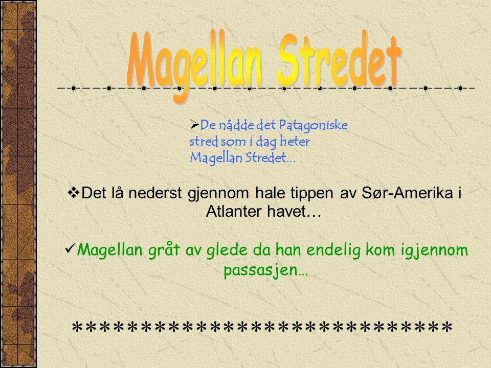  De nådde det Patagoniske stred som i dag heter Magellan Stredet...  Det lå nederst gjennom hale tippen av Sør-Amerika i Atlanter havet…  Magellan