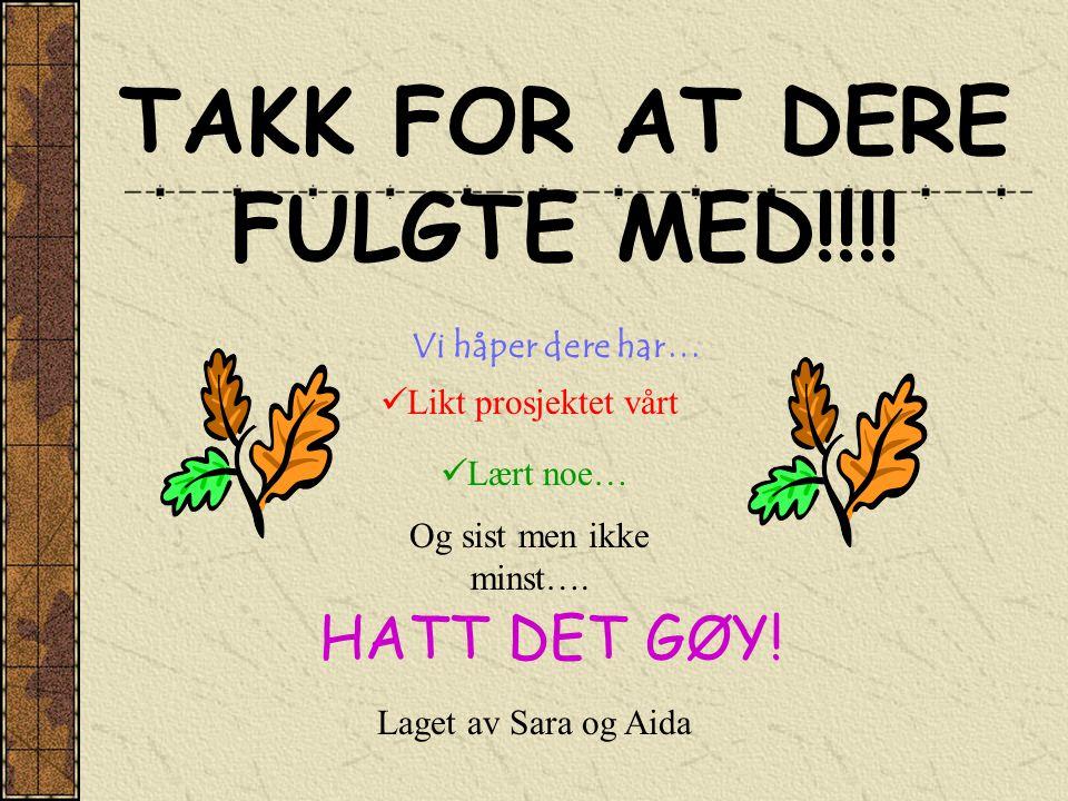 TAKK FOR AT DERE FULGTE MED!!!! Vi håper dere har…  Likt prosjektet vårt HATT DET GØY!  Lært noe… Og sist men ikke minst…. Laget av Sara og Aida