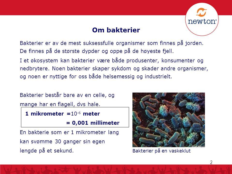 Om bakterier 2 Bakterier er av de mest suksessfulle organismer som finnes på jorden. De finnes på de største dypder og oppe på de høyeste fjell. I et