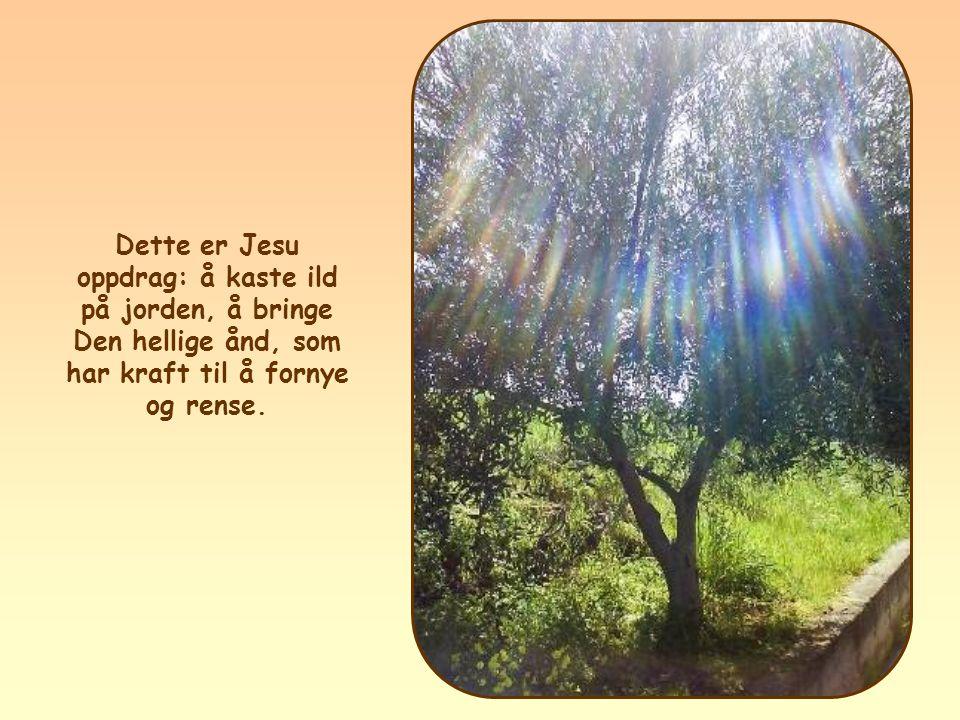 Dette er Jesu oppdrag: å kaste ild på jorden, å bringe Den hellige ånd, som har kraft til å fornye og rense.