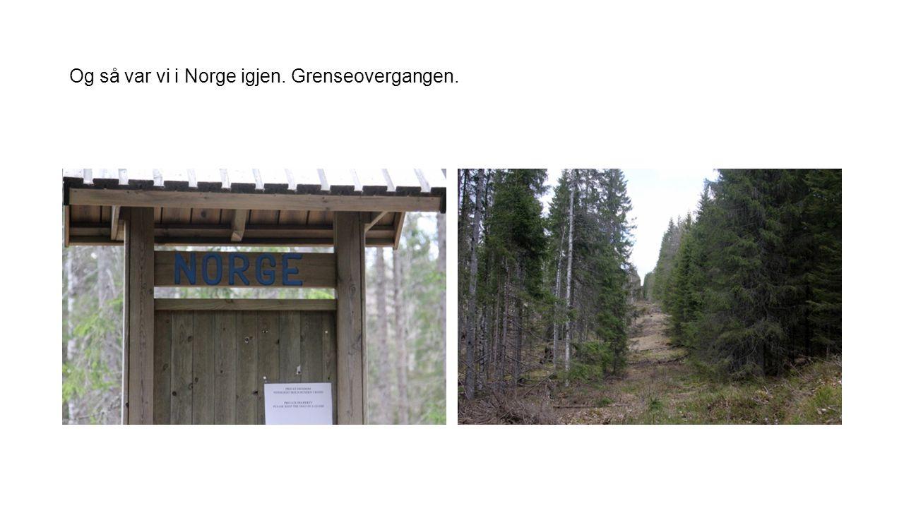 Og så var vi i Norge igjen. Grenseovergangen.