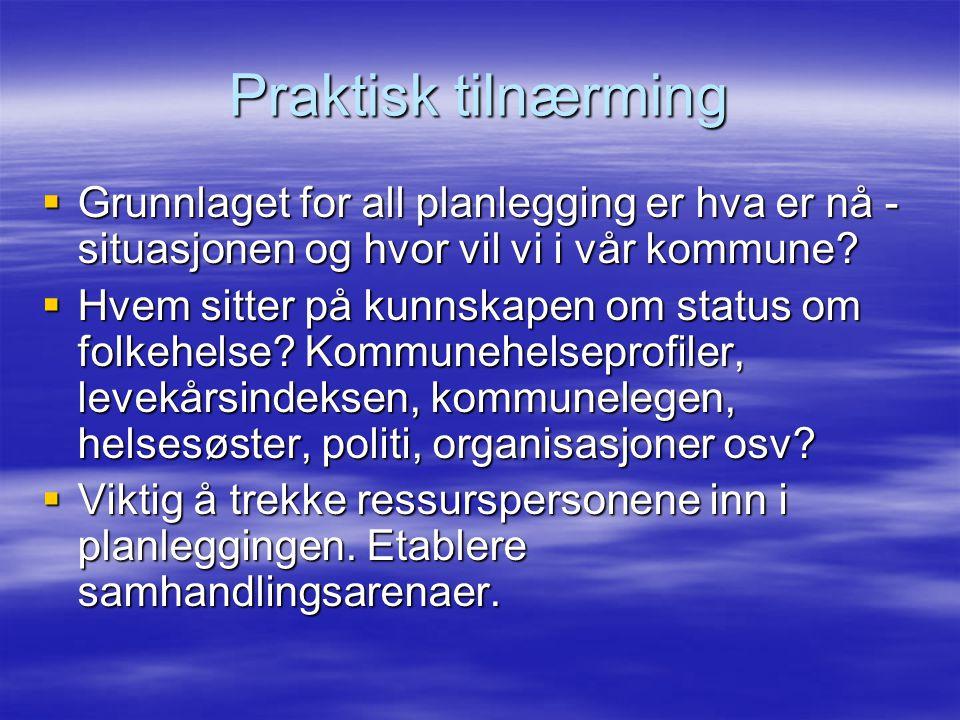 Praktisk tilnærming  Grunnlaget for all planlegging er hva er nå - situasjonen og hvor vil vi i vår kommune.