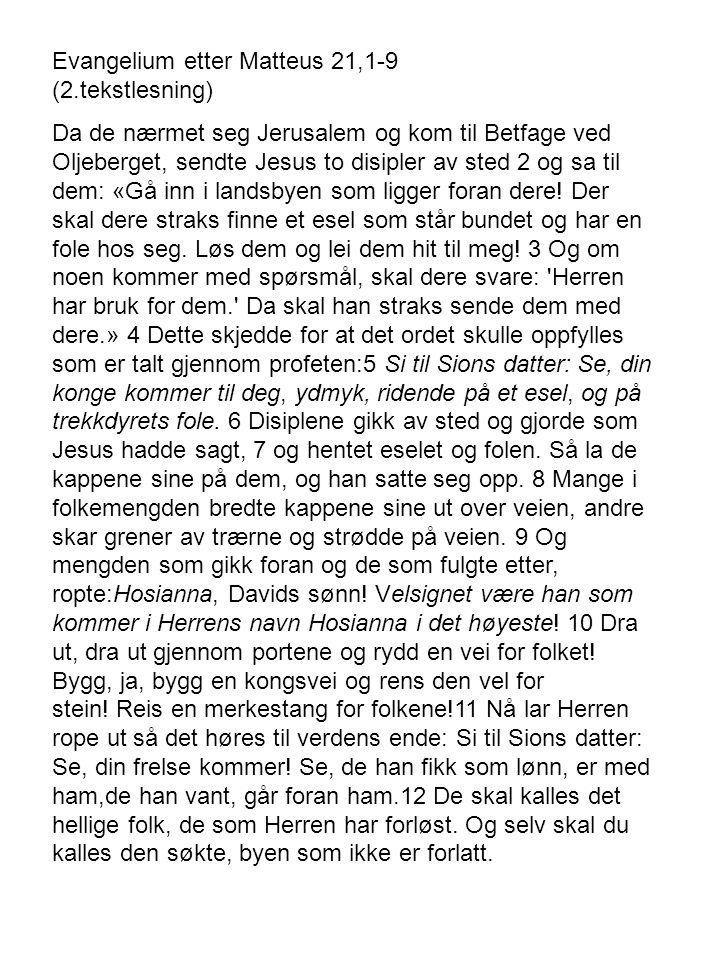 Evangelium etter Matteus 21,1-9 (2.tekstlesning) Da de nærmet seg Jerusalem og kom til Betfage ved Oljeberget, sendte Jesus to disipler av sted 2 og sa til dem: «Gå inn i landsbyen som ligger foran dere.