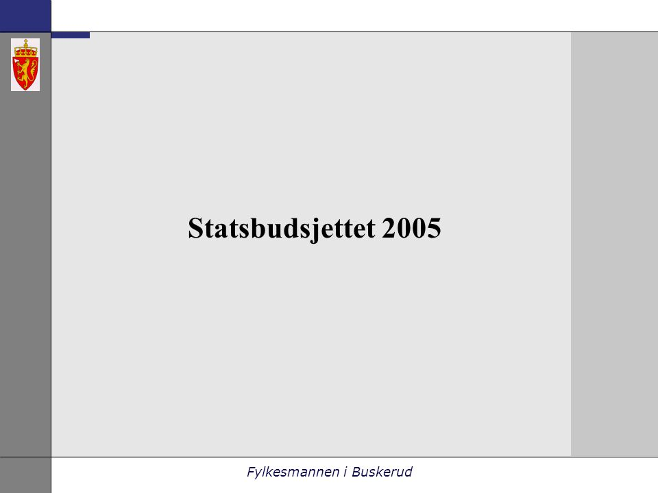 Fylkesmannen i Buskerud Statsbudsjettet 2005
