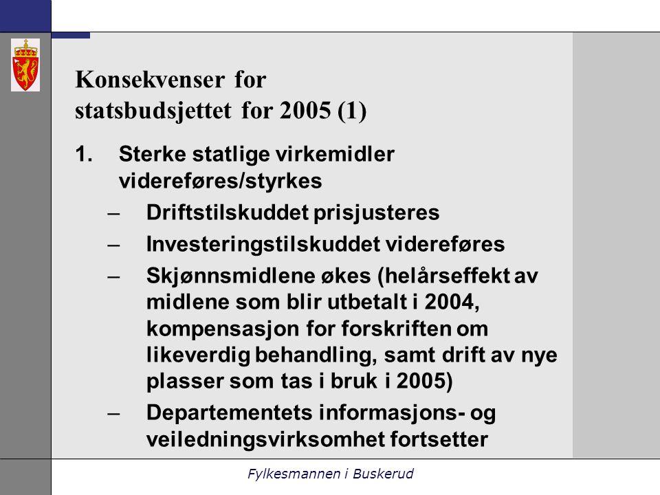 Fylkesmannen i Buskerud Konsekvenser for statsbudsjettet for 2005 (1) 1.Sterke statlige virkemidler videreføres/styrkes –Driftstilskuddet prisjusteres –Investeringstilskuddet videreføres –Skjønnsmidlene økes (helårseffekt av midlene som blir utbetalt i 2004, kompensasjon for forskriften om likeverdig behandling, samt drift av nye plasser som tas i bruk i 2005) –Departementets informasjons- og veiledningsvirksomhet fortsetter