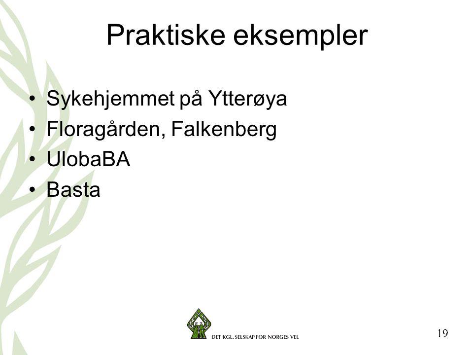 19 Praktiske eksempler •Sykehjemmet på Ytterøya •Floragården, Falkenberg •UlobaBA •Basta