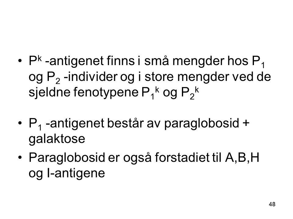 48 •P k -antigenet finns i små mengder hos P 1 og P 2 -individer og i store mengder ved de sjeldne fenotypene P 1 k og P 2 k •P 1 -antigenet består av paraglobosid + galaktose •Paraglobosid er også forstadiet til A,B,H og I-antigene