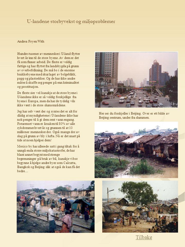 U-landene storbyvekst og miljøproblemer Andrea Føyen With Hundre-tusener av mennesker i U-land flytter hvert år inn til de store byene. Av dem er det