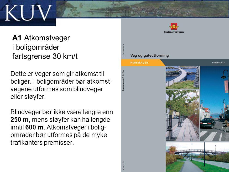 A1 Atkomstveger i boligområder fartsgrense 30 km/t Dette er veger som gir atkomst til boliger. I boligområder bør atkomst- vegene utformes som blindve