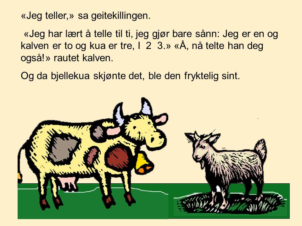 «Jeg teller,» sa geitekillingen. «Jeg har lært å telle til ti, jeg gjør bare sånn: Jeg er en og kalven er to og kua er tre, I  2  3.» «Å, nå telte h
