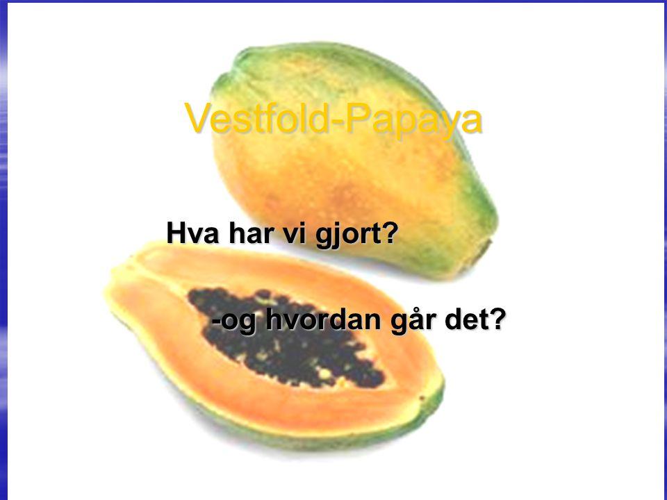 Vestfold-Papaya Hva har vi gjort? -og hvordan går det?