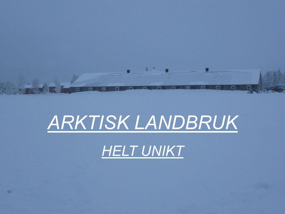 ARKTISK LANDBRUK - HELT UNIKT.