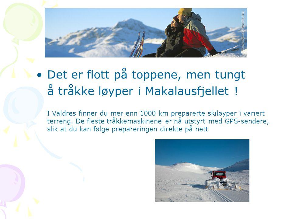 < •Det er flott på toppene, men tungt å tråkke løyper i Makalausfjellet ! I Valdres finner du mer enn 1000 km preparerte skiløyper i variert terreng.