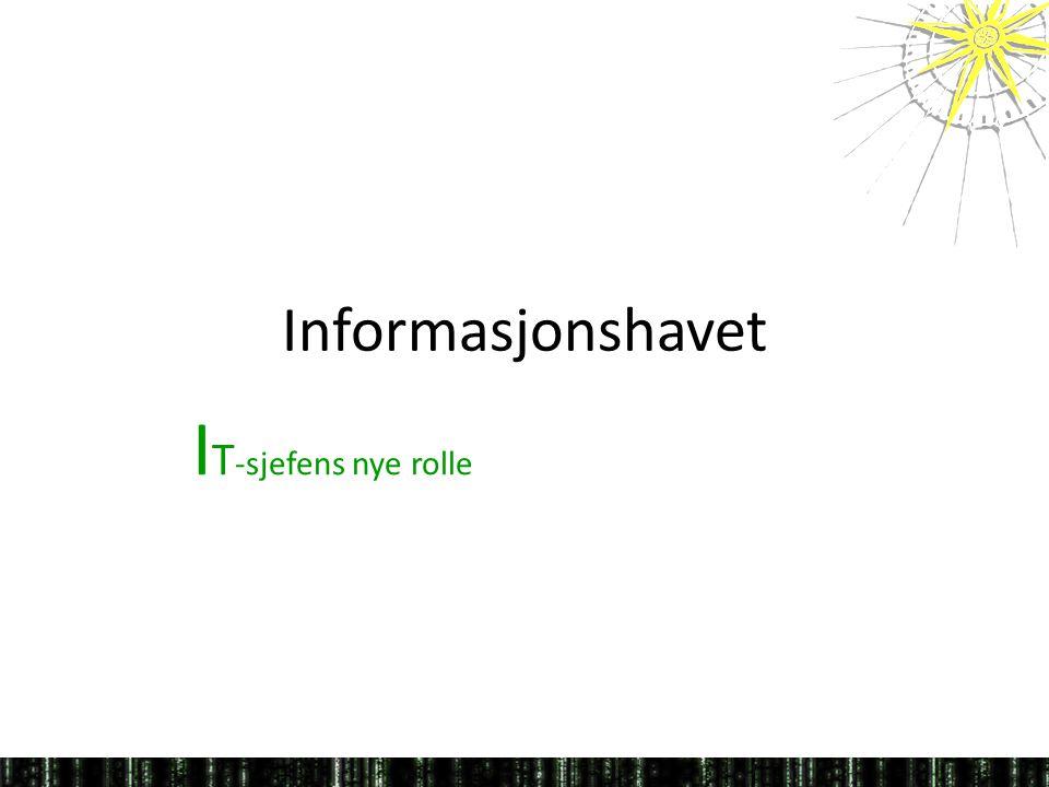 Informasjonshavet I T -sjefens nye rolle