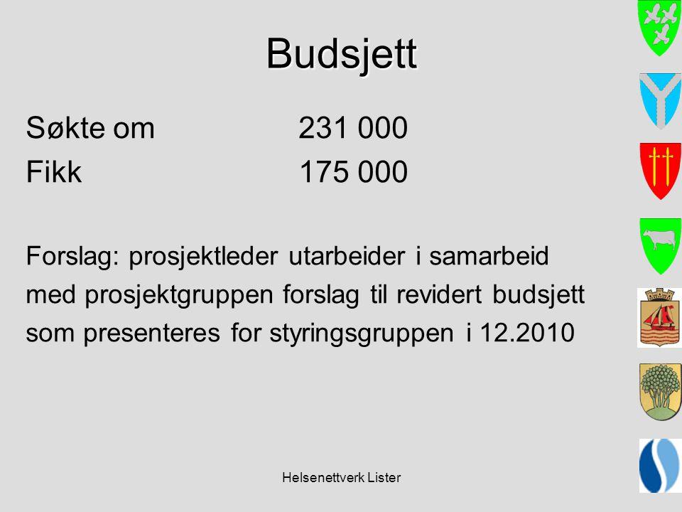 Helsenettverk Lister Budsjett Søkte om 231 000 Fikk 175 000 Forslag: prosjektleder utarbeider i samarbeid med prosjektgruppen forslag til revidert budsjett som presenteres for styringsgruppen i 12.2010