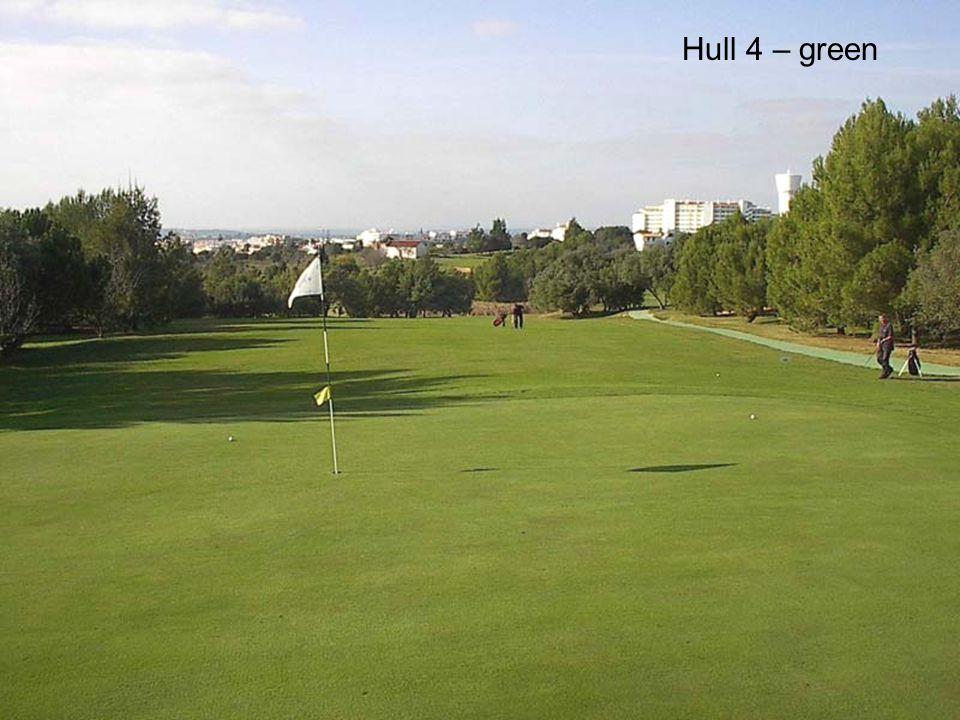 Hull 4 – green