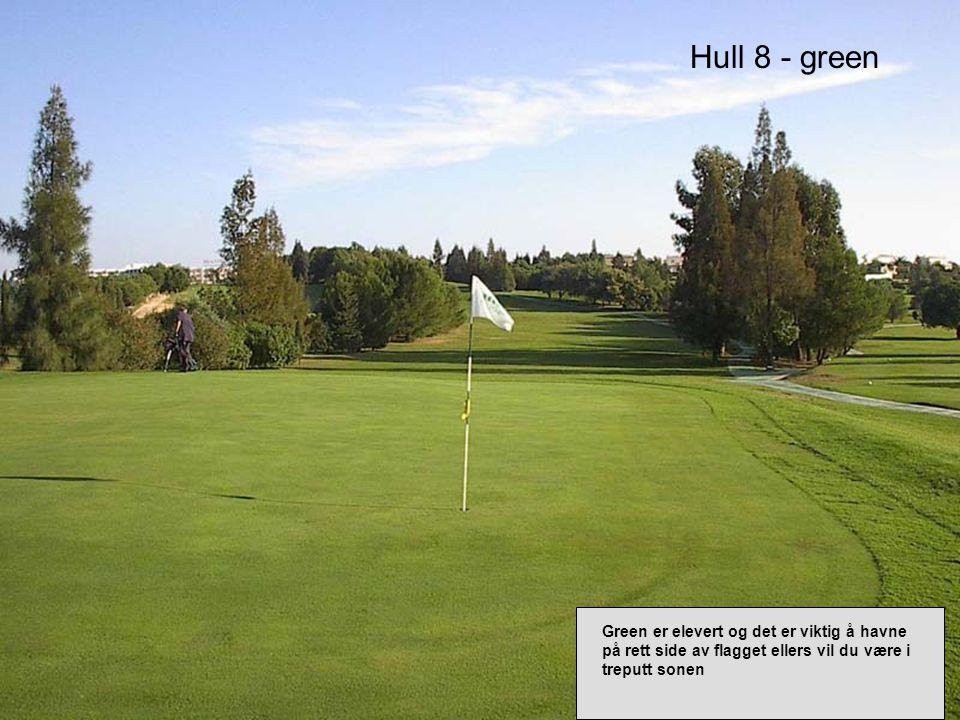 Hull 8 - green Green er elevert og det er viktig å havne på rett side av flagget ellers vil du være i treputt sonen