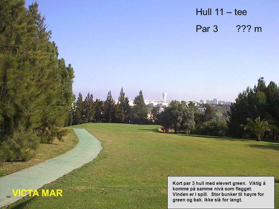 Hull 11 – tee Par 3 . m VICTA MAR Kort par 3 hull med elevert green.