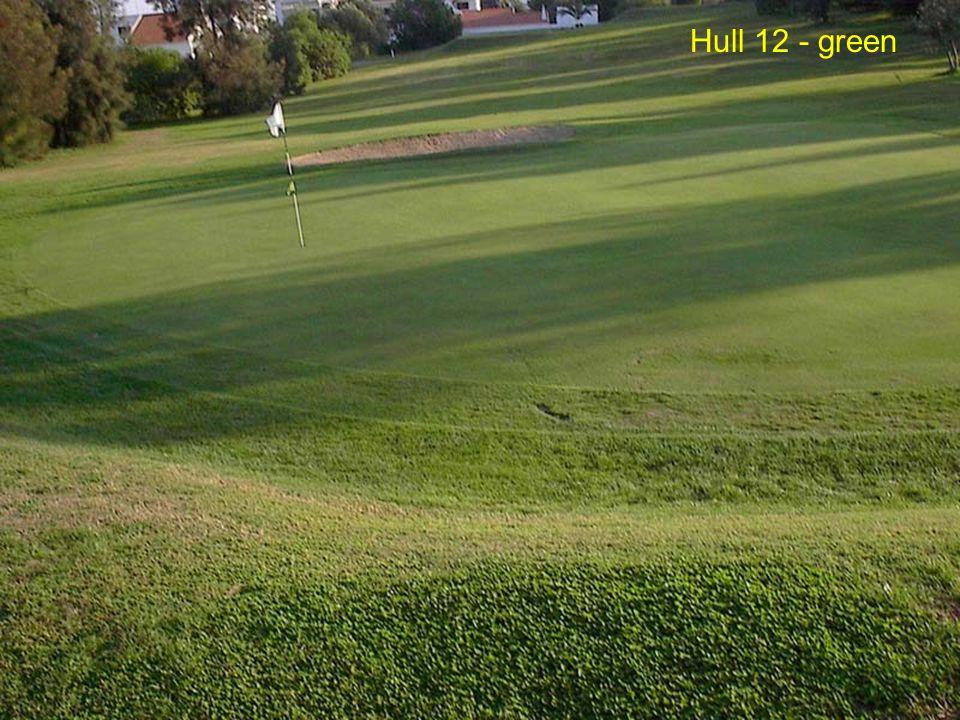 Hull 12 - green