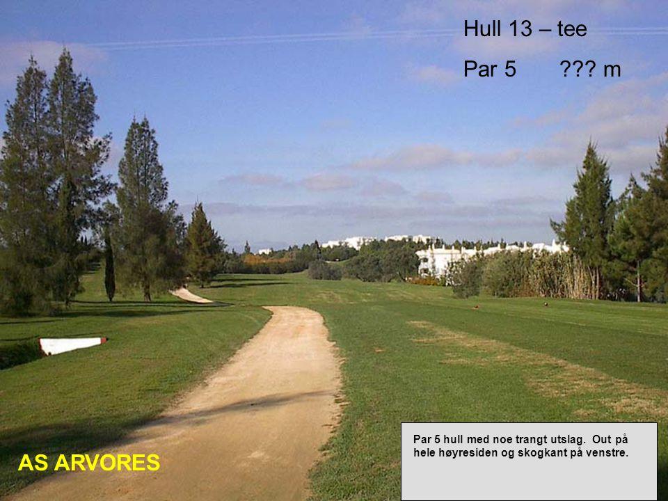 Hull 13 – tee Par 5 . m AS ARVORES Par 5 hull med noe trangt utslag.
