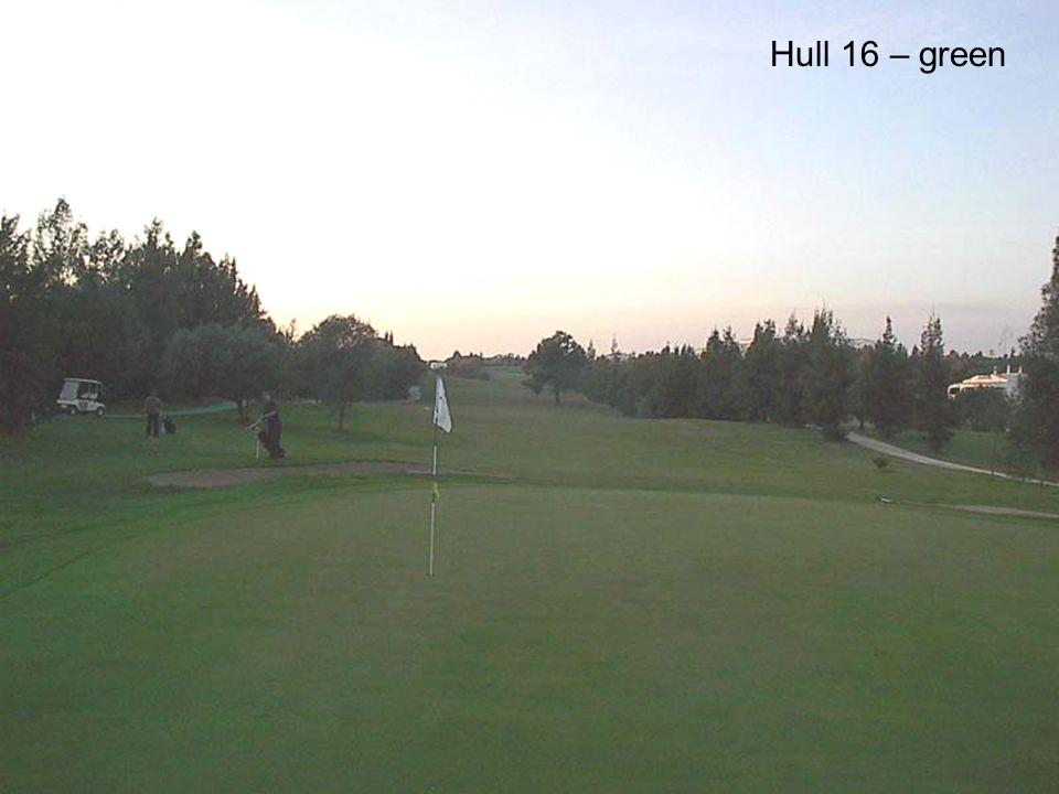 Hull 16 – green