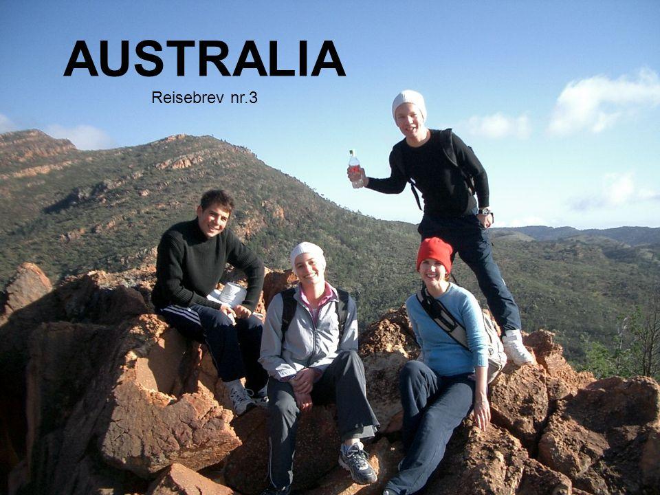 AUSTRALIA Reisebrev nr.3