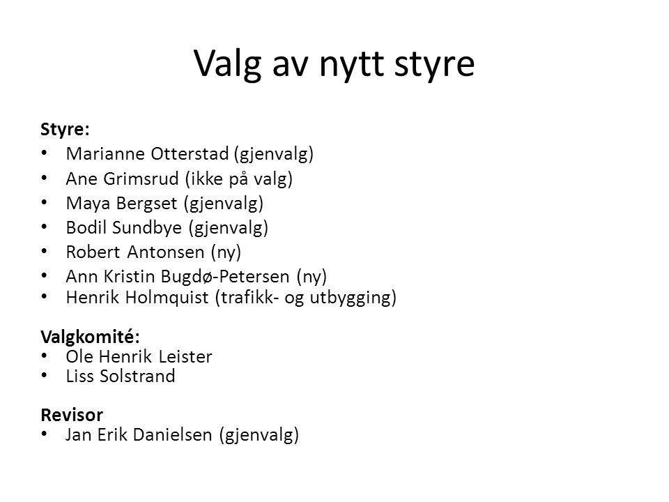 Valg av nytt styre Styre: • Marianne Otterstad (gjenvalg) • Ane Grimsrud (ikke på valg) • Maya Bergset (gjenvalg) • Bodil Sundbye (gjenvalg) • Robert