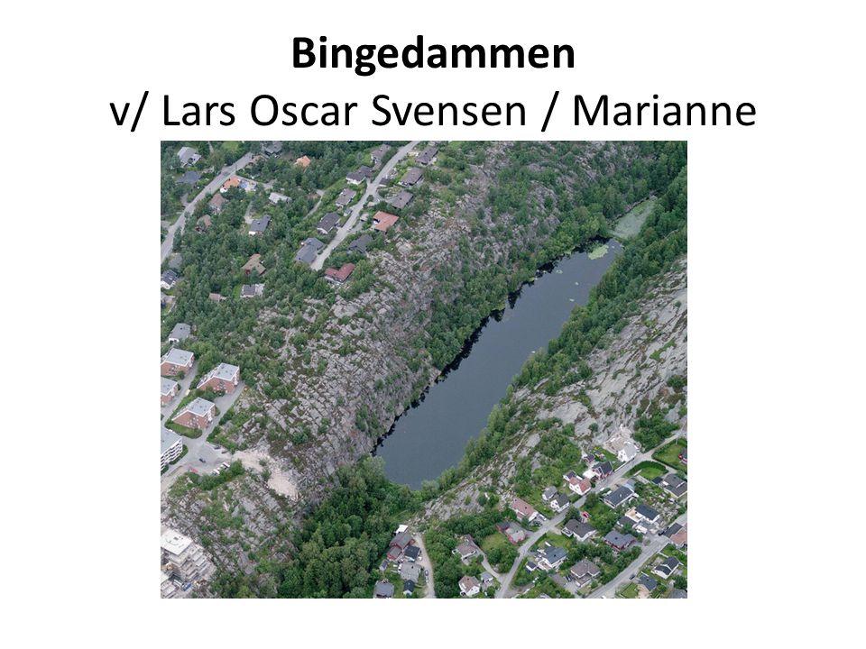 Bingedammen v/ Lars Oscar Svensen / Marianne