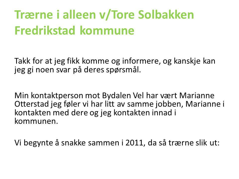 Trærne i alleen v/Tore Solbakken Fredrikstad kommune Takk for at jeg fikk komme og informere, og kanskje kan jeg gi noen svar på deres spørsmål. Min k