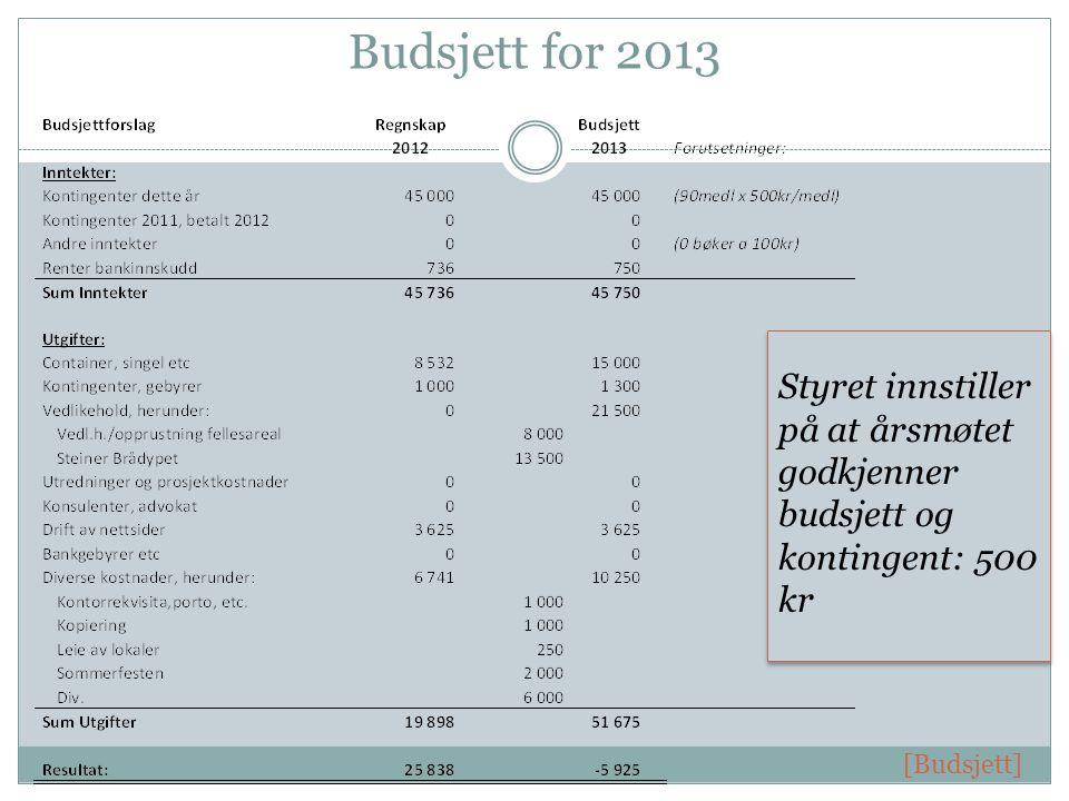 Budsjett for 2013 Styret innstiller på at årsmøtet godkjenner budsjett og kontingent: 500 kr [Budsjett]