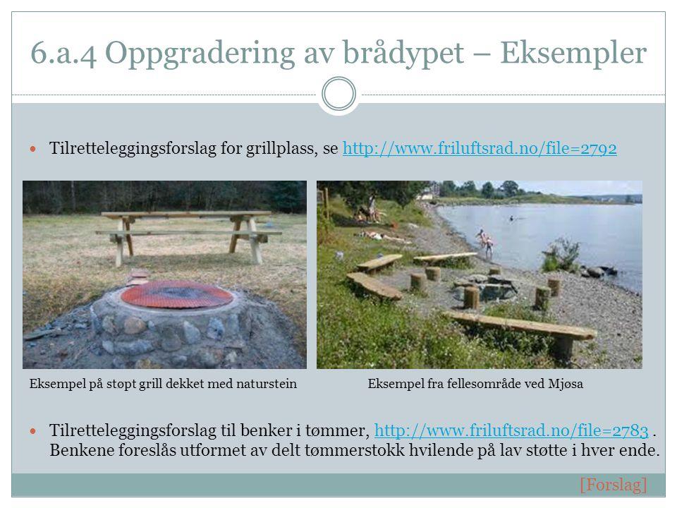 6.a.4 Oppgradering av brådypet – Eksempler  Tilretteleggingsforslag for grillplass, se http://www.friluftsrad.no/file=2792http://www.friluftsrad.no/file=2792 Eksempel på støpt grill dekket med natursteinEksempel fra fellesområde ved Mjøsa  Tilretteleggingsforslag til benker i tømmer, http://www.friluftsrad.no/file=2783.
