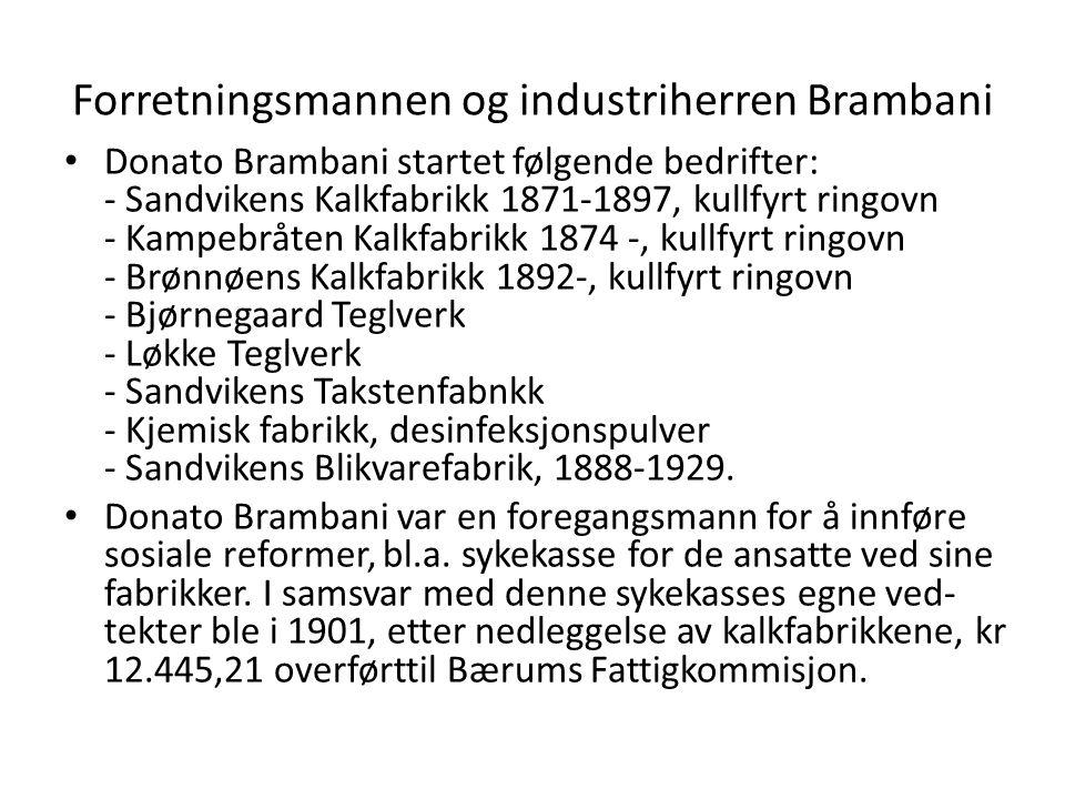 Forretningsmannen og industriherren Brambani • Donato Brambani startet følgende bedrifter: - Sandvikens Kalkfabrikk 1871-1897, kullfyrt ringovn - Kamp