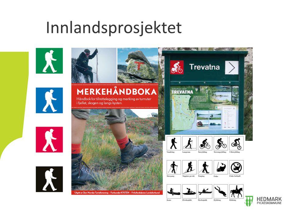 Oppland 2013 - Antall søknader: 38 stk.