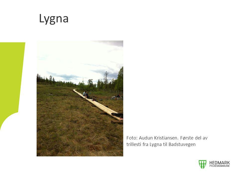 Lygna Foto: Audun Kristiansen. Første del av trillesti fra Lygna til Badstuvegen