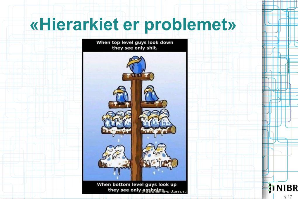 s 17 «Hierarkiet er problemet»