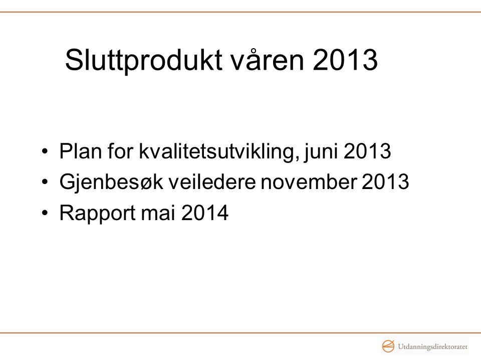 Sluttprodukt våren 2013 •Plan for kvalitetsutvikling, juni 2013 •Gjenbesøk veiledere november 2013 •Rapport mai 2014