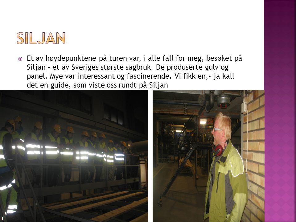  Et av høydepunktene på turen var, i alle fall for meg, besøket på Siljan – et av Sveriges største sagbruk.
