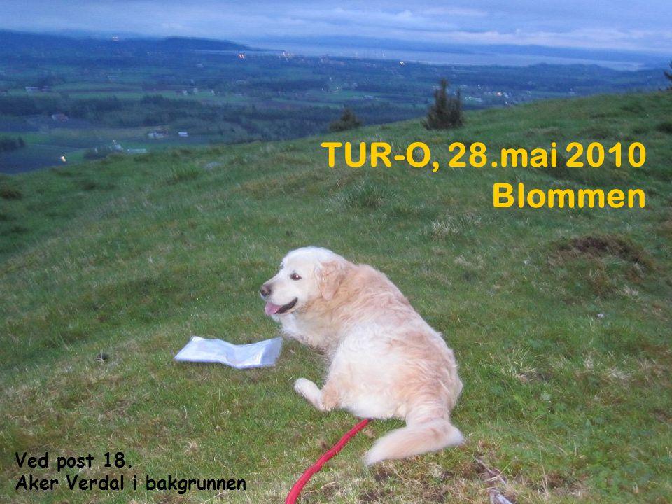 TUR-O, 28.mai 2010 Blommen Ved post 18. Aker Verdal i bakgrunnen