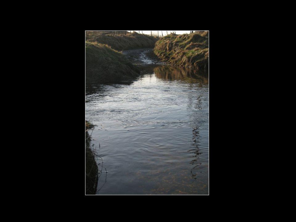 Klar og vakker Åna full av vatn