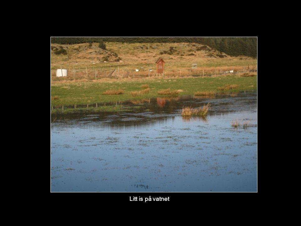 Vatn ute på markene