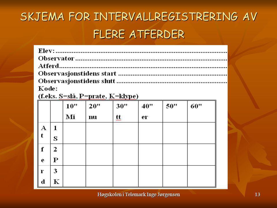 Høgskolen i Telemark Inge Jørgensen14 Hva er det vi Observerer/registrerer ?