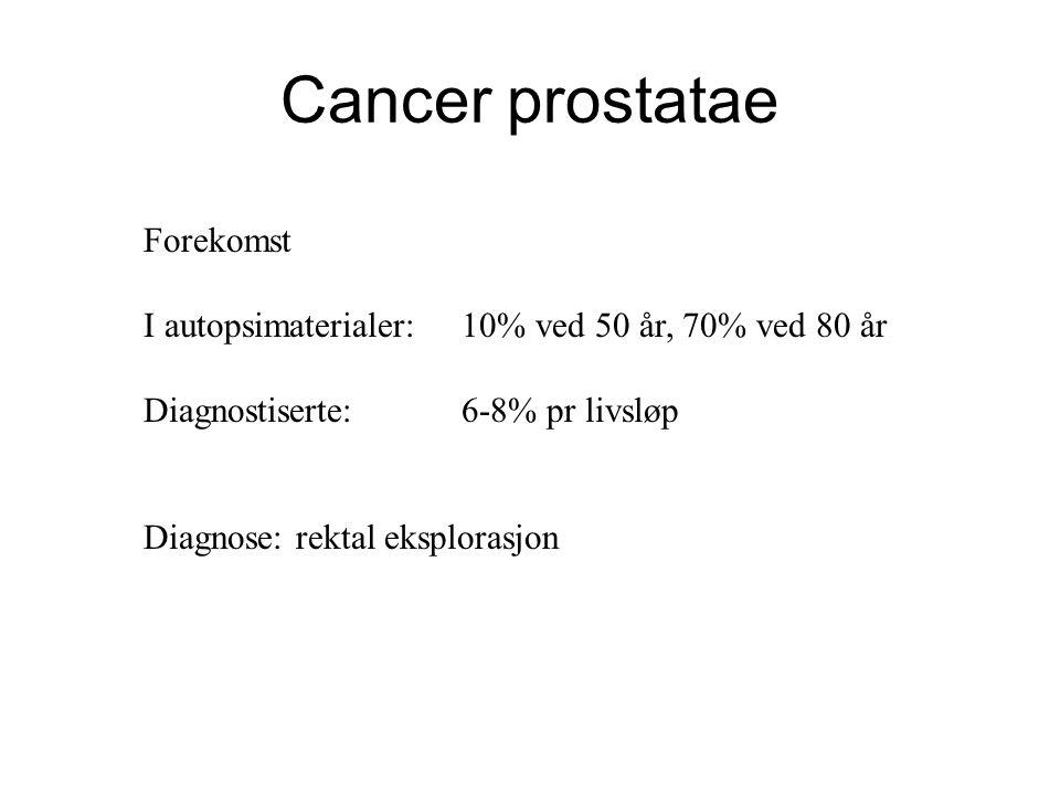 Cancer prostatae Forekomst I autopsimaterialer: 10% ved 50 år, 70% ved 80 år Diagnostiserte:6-8% pr livsløp Diagnose: rektal eksplorasjon