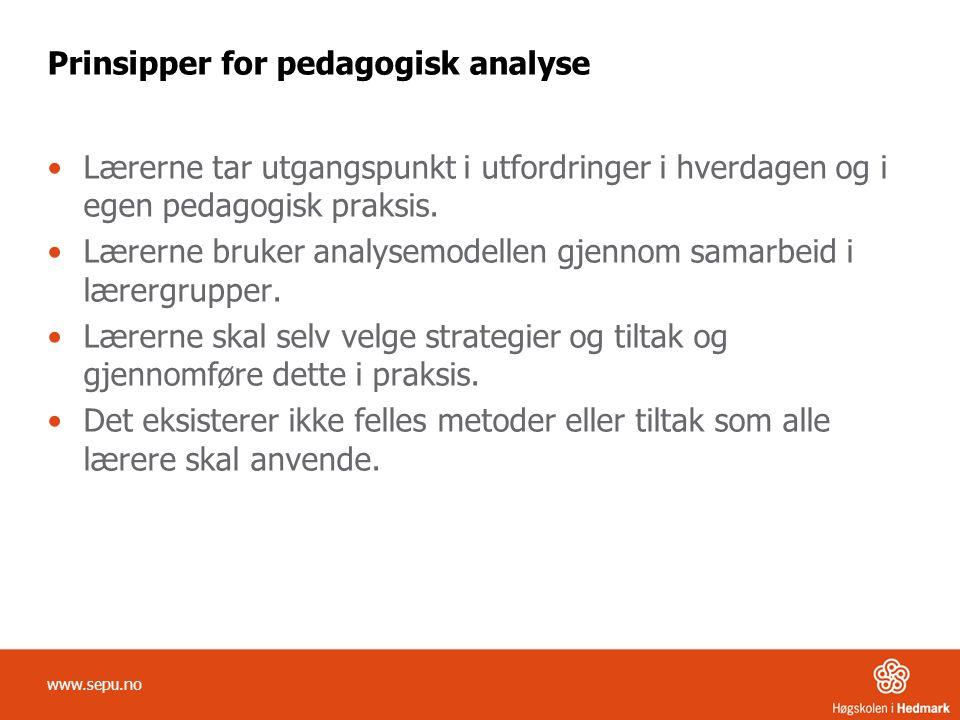 Prinsipper for pedagogisk analyse •Lærerne tar utgangspunkt i utfordringer i hverdagen og i egen pedagogisk praksis.