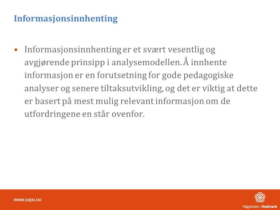 Informasjonsinnhenting •Informasjonsinnhenting er et svært vesentlig og avgjørende prinsipp i analysemodellen.